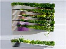 garden planter mirror