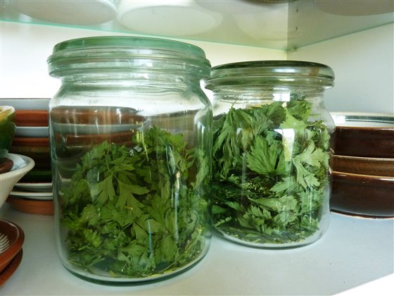 Sušený petržlen a zeler