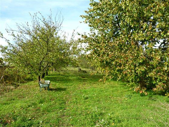 Jesenná záhrada